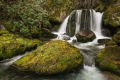 Cascada con las rocas cubiertas de musgo Fotos de archivo libres de regalías