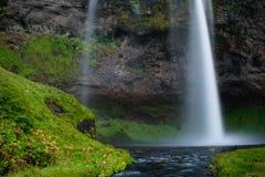 Cascada con paisaje verde Fotos de archivo