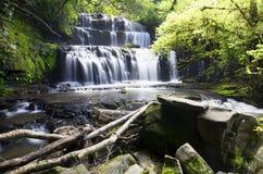Cascada conectada en cascada rodeada por el bosque verde Imagen de archivo libre de regalías