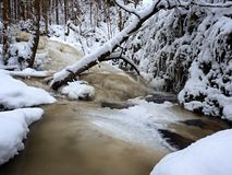 Cascada congelada, cascada, ramitas heladas y cantos rodados helados en espuma congelada de la corriente rápida Cala del invierno Fotografía de archivo