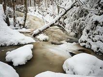 Cascada congelada, cascada, ramitas heladas y cantos rodados helados en espuma congelada de la corriente rápida Cala del invierno Imagen de archivo