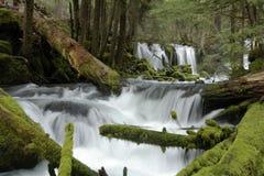 Cascada cubierta de musgo Fotografía de archivo libre de regalías