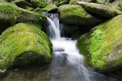 Cascada cubierta de musgo Foto de archivo libre de regalías