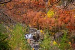 Cascada de Arripas vattenfall i den Ordesa dalen Pyrenees Huesca Arkivbild