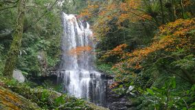 Cascada de Autumn Yunshen en el nuevo distrito de Sanxia de la ciudad de Taipei, nueva ciudad de Taipei, Taiwán almacen de video