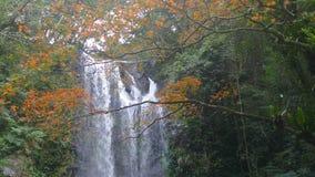 Cascada de Autumn Yunshen en el nuevo distrito de Sanxia de la ciudad de Taipei, nueva ciudad de Taipei, Taiwán almacen de metraje de vídeo