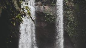 Cascada de Bali, goind del agua abajo con poder enorme en a cámara lenta, cascada alrededor de la selva verde salvaje después de  almacen de metraje de vídeo
