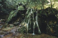 Cascada de Beusnita Foto de archivo