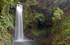 Cascada de Costa Rica Imagen de archivo libre de regalías