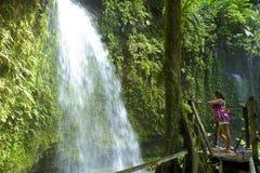 Cascada de Dominica Foto de archivo