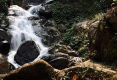 Cascada de Huay Kaew Foto de archivo libre de regalías
