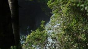 Cascada de Huilo Huilo, Chile almacen de metraje de vídeo
