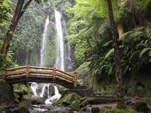 Cascada de Jumog del agua Imagen de archivo libre de regalías