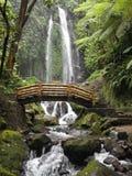 Cascada de Jumog del agua Fotografía de archivo libre de regalías