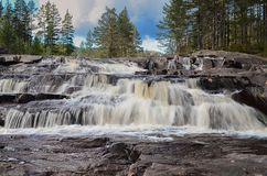 Cascada de la belleza en bosque Imagenes de archivo