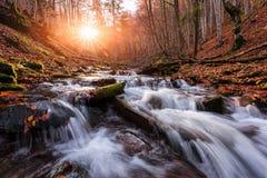 Cascada de la belleza en bosque del otoño Fotografía de archivo libre de regalías