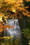 Cascada de la caída Imagen de archivo