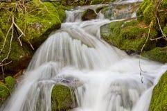 Cascada de la cala que fluye cerca del lago loon fotografía de archivo