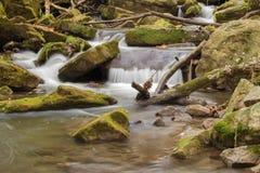 Cascada de la cascada de la montaña Foto de archivo libre de regalías