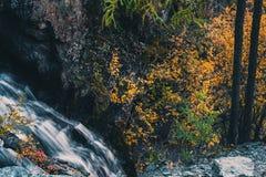 Cascada de la montaña en las rocas Fotografía de archivo libre de regalías