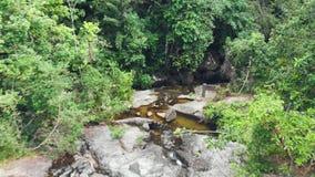 Cascada de la montaña en la selva metrajes