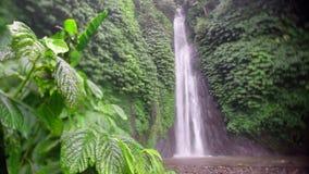 Cascada de la naturaleza de Bali almacen de metraje de vídeo