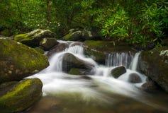 Cascada de la naturaleza de la bifurcación del rugido de Great Smoky Mountains TN escénica foto de archivo libre de regalías