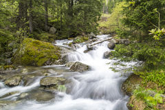 Cascada de la primavera Foto de archivo libre de regalías