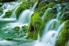 Cascada de la primavera natural Imagen de archivo