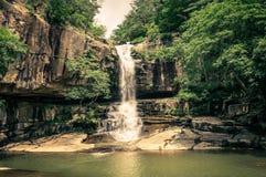 Cascada de la selva Imagenes de archivo