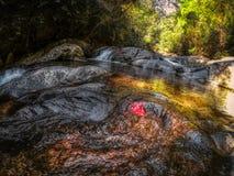 Cascada de la selva - cascada Hua Hin Thailand de Pala U foto de archivo