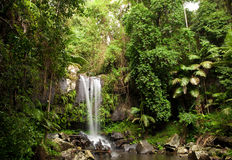 Cascada de la selva tropical Imagen de archivo libre de regalías