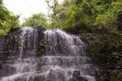 Cascada de la selva tropical Fotografía de archivo