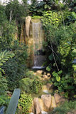 Cascada de la selva tropical Fotos de archivo