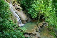 Cascada de la selva tropical de Palenque Fotos de archivo libres de regalías