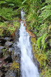 Cascada de Levada Fotografía de archivo libre de regalías