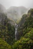 Cascada de Madeira fotografía de archivo libre de regalías