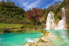 Cascada de Minas Viejas Mexico foto de stock
