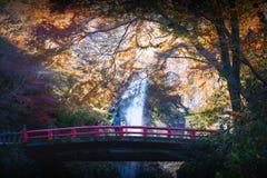 Cascada de Minoh en la estación del otoño imagenes de archivo