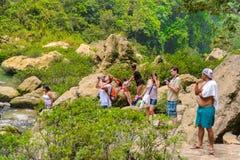 Cascada de Misol Ha,瀑布在恰帕斯州, Mexi密林  免版税库存照片