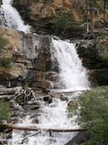 Cascada de niveles múltiples en Jasper National Park Fotos de archivo