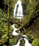 Cascada de Oregon fotografía de archivo