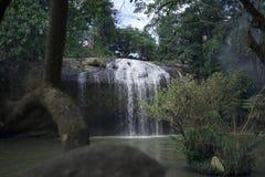 Cascada de Prenn en el parque cerca de la ciudad de Dalat, Vietnam fotografía de archivo libre de regalías