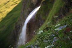 Cascada de Schleierfall en Tux Tyrol imagenes de archivo