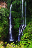 Cascada de Sekumpul Imagen de archivo