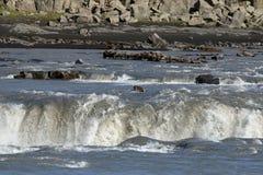 Cascada de Selfoss Fotos de archivo