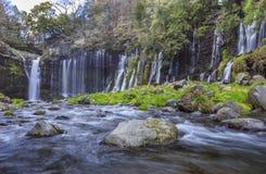 Cascada 1 de Shiraito Foto de archivo