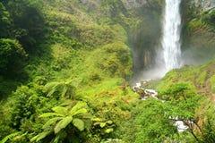 Cascada de Sipisu Pisu fotos de archivo libres de regalías