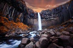 Cascada de Svartifoss en Islandia Imágenes de archivo libres de regalías