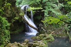 Cascada de Vaioaga, parque nacional de Beusnita, Rumania Foto de archivo